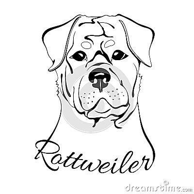 T te de chien de rottweiler illustration de vecteur - Dessin tete de chien ...