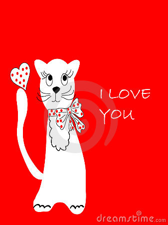 TThe Postcard blanching cat.