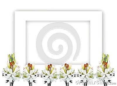 Tuberose Bouquet on Horizontal Frame