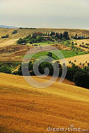 Tucsany Hügel