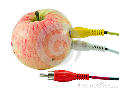 Tulip audio video wires plugs connected to apple