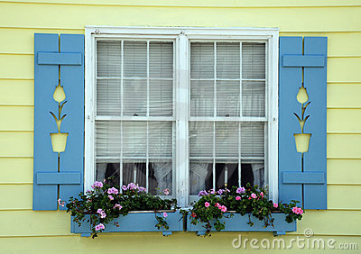 Tulip Cottage Window