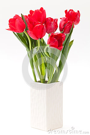 Free Tulip In Vase Royalty Free Stock Photos - 28851768