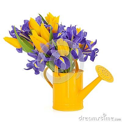 Tulip and Iris Flower Beauty