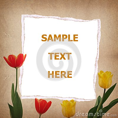 Tulip and old paper for text and background