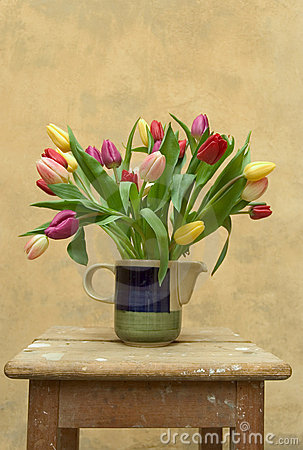 Free Tulips Stock Photos - 655903