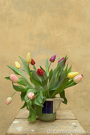 Free Tulips Stock Photography - 655912