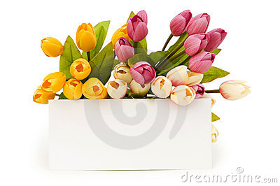 Tulips and blank message