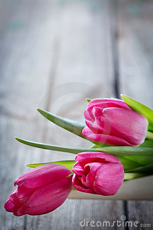 Tulips in bowl on wooden board with copyspace