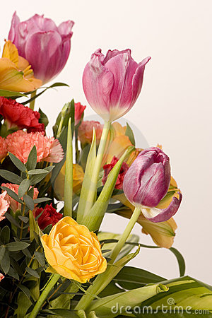 Free Tulips, Carnations & Roses Stock Images - 4158784