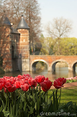 Tulips at the castle