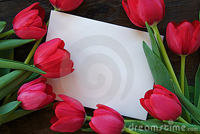 Tulips and envelope