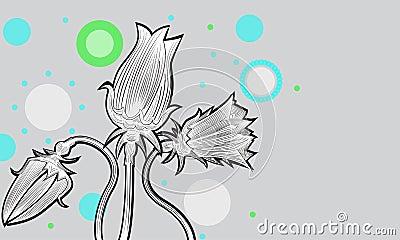 Tulips02