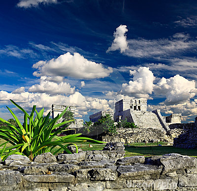 Free Tulum Ruins In The Maya World Near Cancun Royalty Free Stock Photo - 8764365