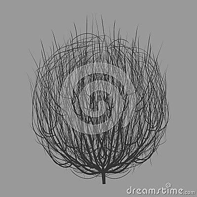 Free Tumbleweed Drawing Vector Stock Photography - 59494162