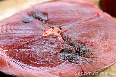 Tuna Fish Close Up