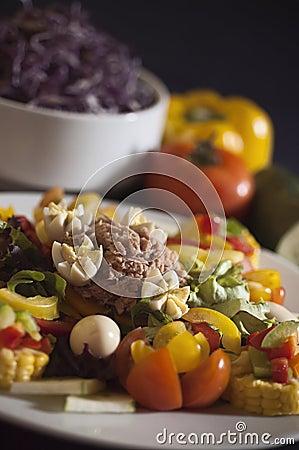 Free Tuna Fish Salad Royalty Free Stock Photos - 27656528