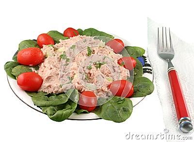 Tuna Fish Salad on Tuna Fish And Spinach Salad Gvictoria Dreamstime Com