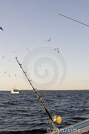 Tuna fishing rod