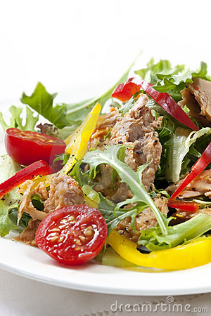 Free Tuna Salad Stock Photography - 11173062