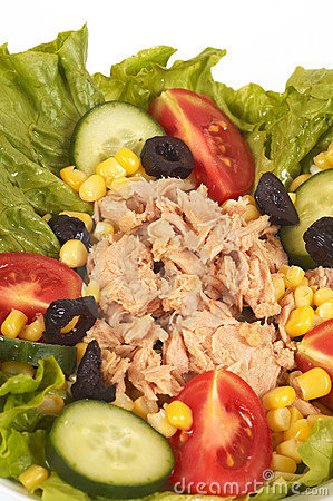 Free Tuna Salads Royalty Free Stock Images - 768369