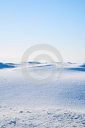 Free Tundra Royalty Free Stock Images - 12695029