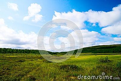 Tundra north of Russia