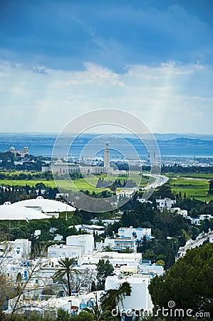 Tunis city view from Sidi Bou Said