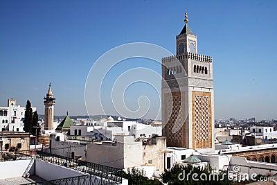 Tunis landscape