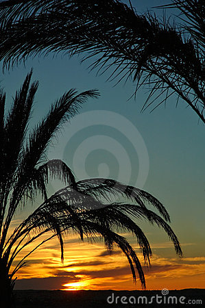 Tunisia sunset