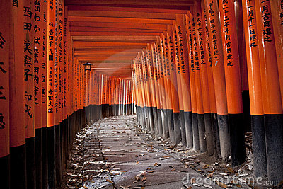 Tunnel of 10000 torii gates