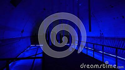 Tunnel sombre et mystérieux avec lumières banque de vidéos