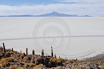 Tunupa salt flats
