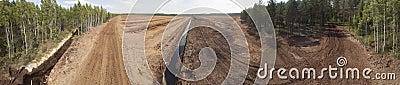 Peat field
