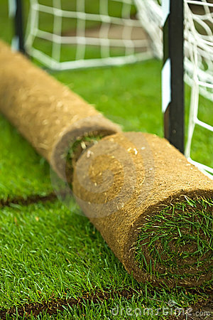 Turf grass rolls on football field