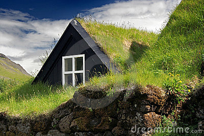 Turf roof house