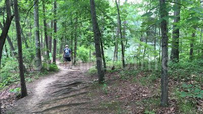 Turistas no lago Norman State Park video estoque