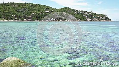Turistas roncando em Cryrtal Clear Turquoise Bay Water em Koh Tao, Tailândia video estoque