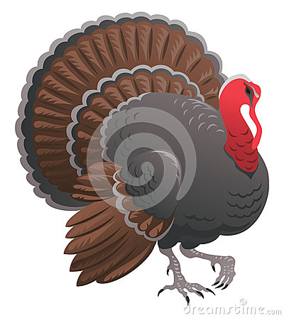 Free Turkey Royalty Free Stock Photography - 59916427