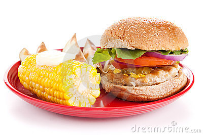 Turkey Burger on White Background