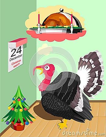 Turkey before Christmas