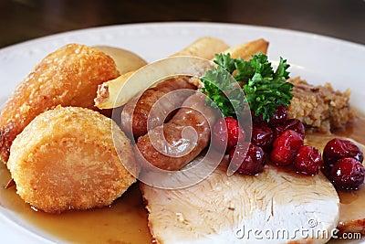 Turkey dinnner