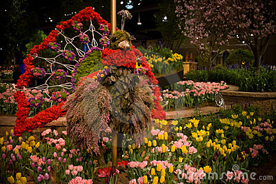 Turkey Flower Show Editorial Photography