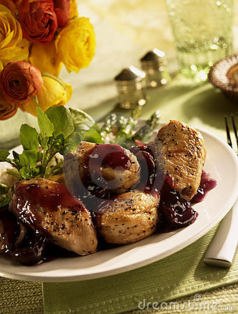 Free Turkey Medallions With Cranberry Sauce Stock Photos - 11306533