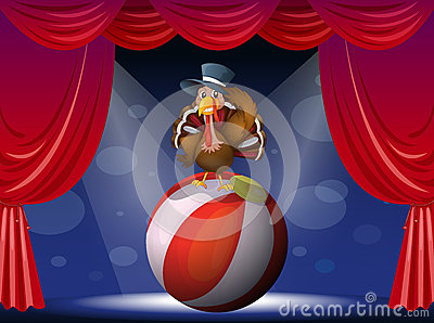 A turkey performing on stage with a ball