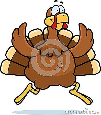 Turkey Running Royalty...