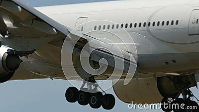 Turkish Airlines Boeing B777, das nach Narita landet stock video