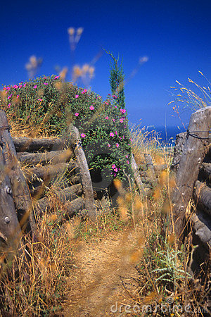 Free Turkish Infantry Trenches, Gallipoli Royalty Free Stock Photography - 5284257