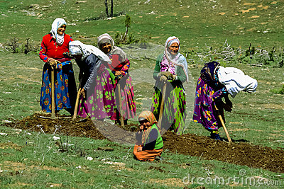 Turkish people at landwork countryside of Turkey Editorial Photography