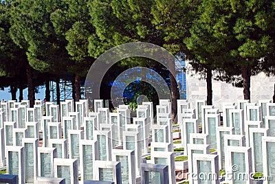 Turkisk militär kyrkogård Redaktionell Bild